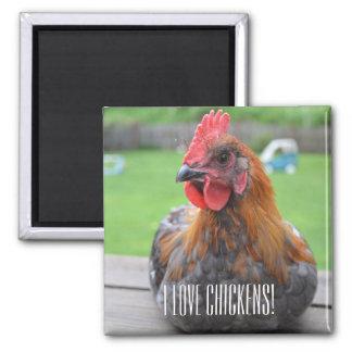 Imã Eu amo galinhas… Ímã de cobre preto de Maran Roo