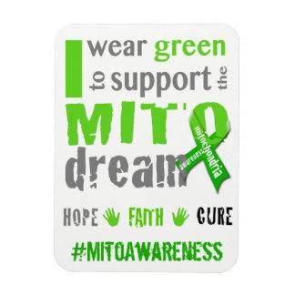 Ímã Eu visto o verde para apoiar o sonho de Mito