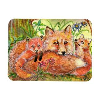 Ímã Família do Fox nas madeiras