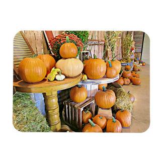 Ímã feliz das abóboras da exposição do outono do