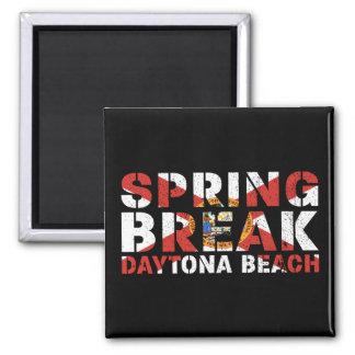 Imã Férias da primavera Daytona Beach Florida