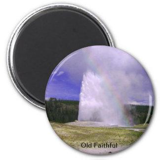 Imã Fiel velho no parque nacional de Yellowstone
