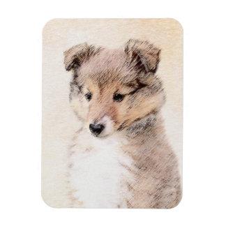 Ímã Filhote de cachorro do Sheepdog de Shetland que