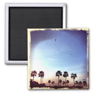 Imã Filtro retro das palmeiras