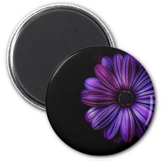 Imã Floral, arte, design, bonito, novo, forma