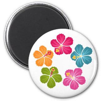 Imã Flores do hibiscus