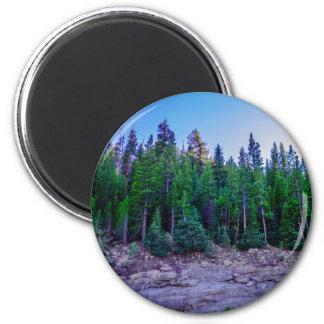 Imã Floresta & céu do vale de Yosemite