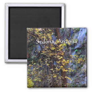 Imã Folha dourada Sedona, arizona