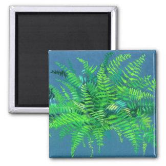 Imã Folhas da samambaia, pteridophyte, arte floral