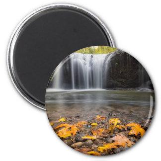 Imã Folhas de bordo da queda na cachoeira escondida
