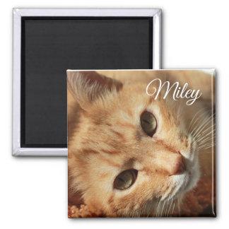 Imã Foto do gato e ímã personalizados do nome