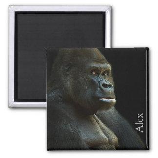 Imã Foto do gorila