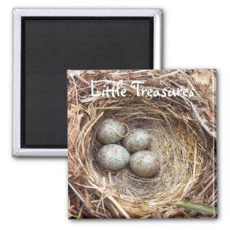 Imã Foto pequena dos ovos de ninho do pássaro dos
