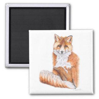 Imã Fox