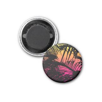 Imã Frondas pretas tropicais da palma em cor-de-rosa,