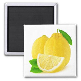 Imã Frutas do limão