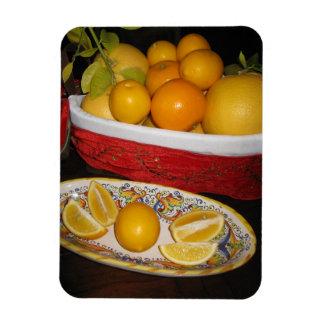 Ímã Frutas frescas
