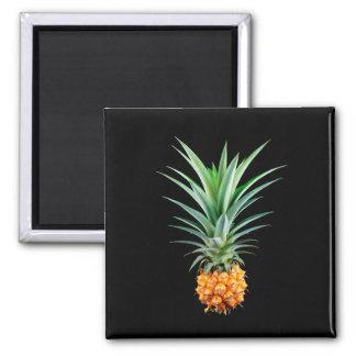 Imã fundo preto minimalista elegante do abacaxi |