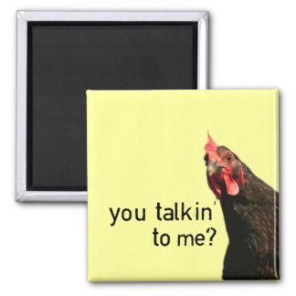 Imã Galinha engraçada da atitude - você talkin a mim?