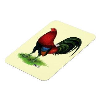 Ímã Gamecock:  Escuro - vermelho