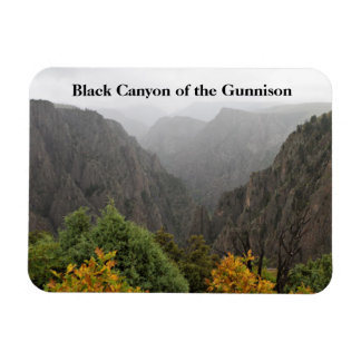 Ímã Garganta preta do parque Colorado de Gunnison