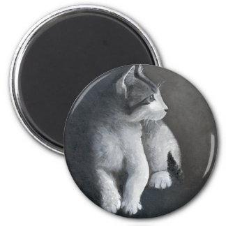 Imã Gatinho do gato malhado