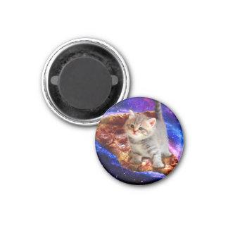 Imã gato da pizza - gatos bonitos - gatinho - gatinhos