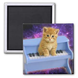 Imã Gato do piano