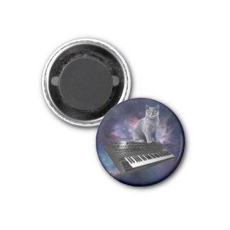 Imã gato do teclado - música do gato - espace o gato