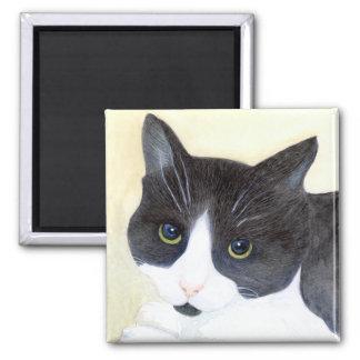 Imã Gato preto e branco