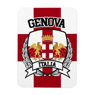 Ímã Genebra
