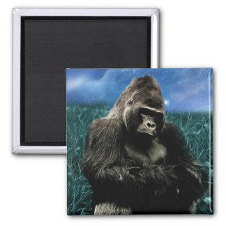 Imã Gorila no prado