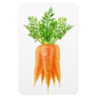 Ímã Grupo das cenouras