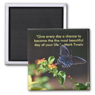 Imã Ímã bonito da borboleta do dia