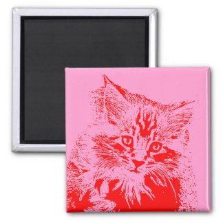 Imã Ímã cor-de-rosa e vermelho do gato