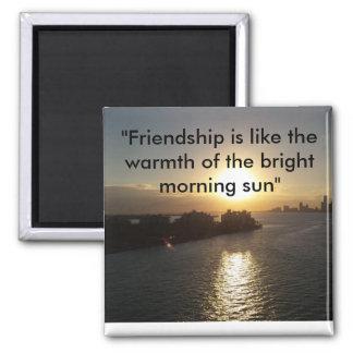 Imã Ímã da amizade