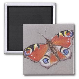 Imã Ímã da borboleta de pavão