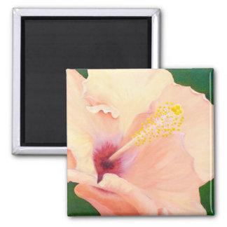 Imã Ímã da flor do hibiscus