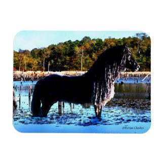 """Ímã """"Ímã da foto do cavalo no pântano"""""""