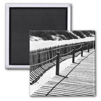 Imã Ímã da foto do passeio à beira mar e das dunas