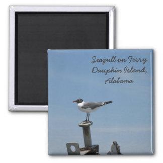 Imã Ímã da ilha do Dauphin, Alabama