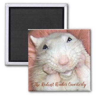Imã Ímã de Bridget do rato do animal de estimação