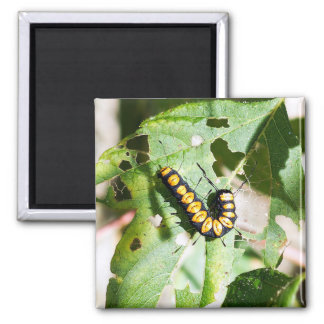 Imã Ímã de Caterpillar da pá