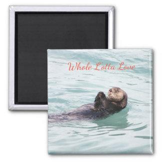 Imã Ímã de flutuação tranquilo da lontra do amor