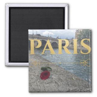 Imã ímã de Paris