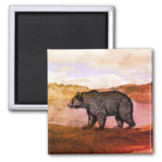 Imã Ímã de passeio do urso de urso