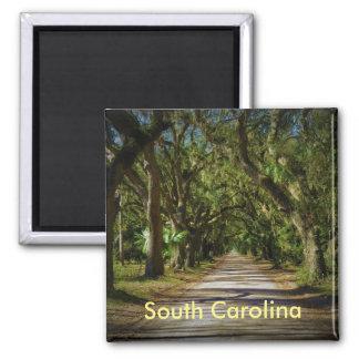 Imã ímã de South Carolina