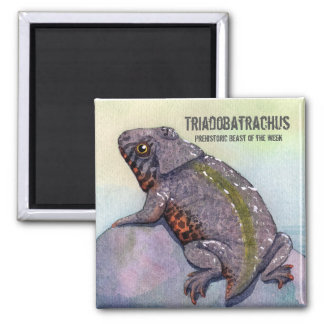 Imã Ímã de Triadobatrachus