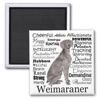 Imã Ímã de Weimaraner