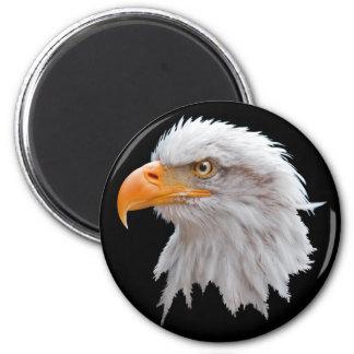 Imã Ímã do Alasca da águia americana